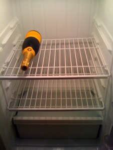 My bachelorette fridge
